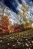 Autumn Mackeral Sky