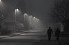 Winner - #253 Fog or Mist