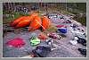 Algonquin Park Summer Campers