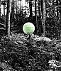 orb in the woods...