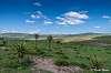 Transkei Vista