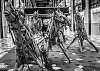 Angery bamboo horses