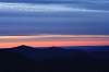 Sunny Morning at Roan  Mt