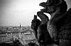 Paris! Gargoyles! (7 photos)