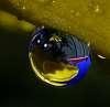 A Scenic Drop.......