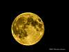 Tonights Supermoon