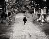 cemetary scamper