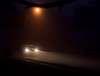 More Fun in the Fog