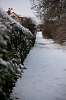 The Snowy Path