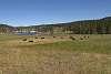 Challenge # 161 - Yellowstone Nat'l Park