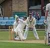The cricket season starts