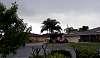 Rain in Suburbia.............