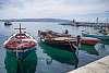 Istria/Dalmatia (HR)