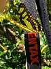 Butterflies love Pentax