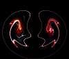 The Flame Spirits..........