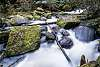 Little Toorongo River