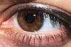 Eye, detailed