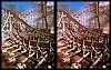 Wooden Roller Coaster (cross-eye stereogram)