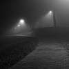 Best of 2016 Night walk