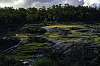 Hovea Falls