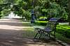Palace bench