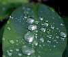 We had rain........
