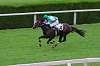 Horserace Merano