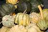 Up To My Gourd In Gourds.