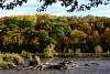 Iowa color along the Cedar River