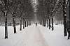 Winter. Tsvetnoy Boulevard