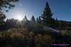 Landscape Lens Flare