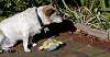 Go on then