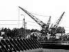 Post Processing Challenge #266 Cranes