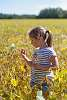 In a yellow field