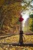 Leaves on the tracks