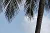 Kalpitiya Beach - Sri Lanka - Not Just for Tourists