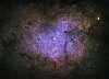 Elephant's Trunk Nebula - From a Newbie