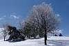 Winter scene in Montreal
