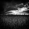 Farmland Gothic
