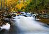 Chase Creek in Autumn