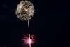 Pyrotechnic Dandelion