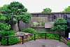 Bonsai Garden at the NC Arboretum