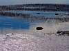Incoming tide, Saint Lawrence River. 645Z + FA 200 mm f/4 @ f/11.
