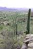 Dove Mountain rural Tucson, Arizona