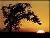 Fireball sunset in Louisiana