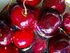 Chérie, pass me the Cherries ... lol !