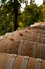 Winery Photos (playing with F1.4 50mm)