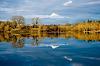 Ridgefield Reflections