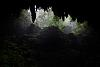 Rio Camuy Cave's Park
