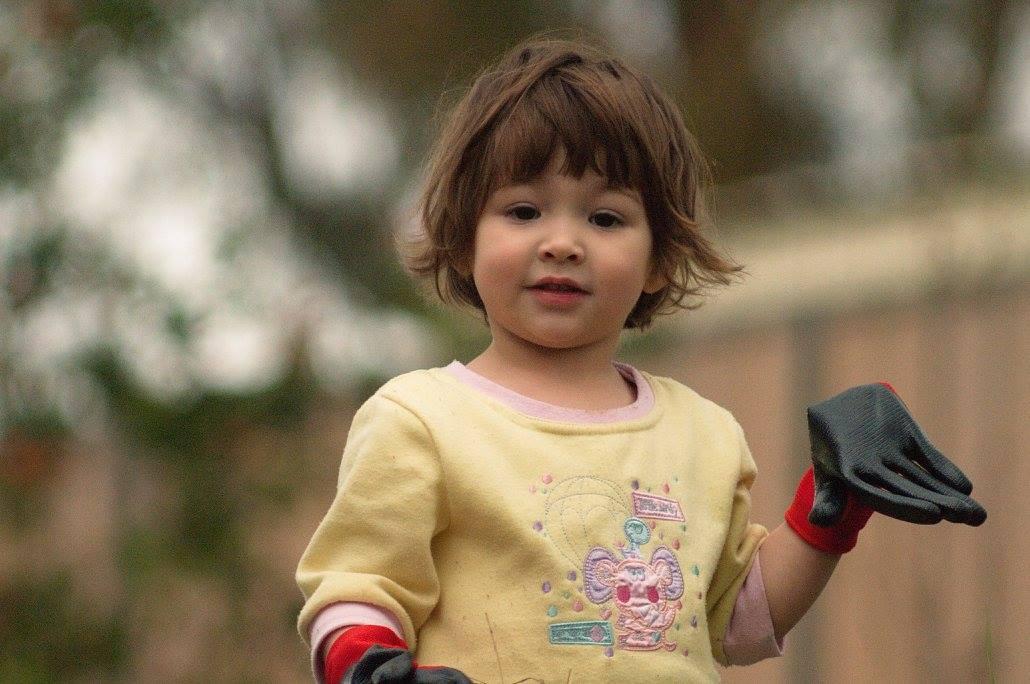 My granddaughter Ava helping in the garden 02, 6 September 2015.